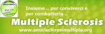 amicism-banner